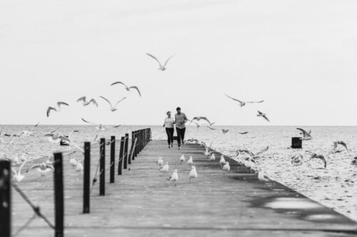 couple chasing birds at North Avenue Beach