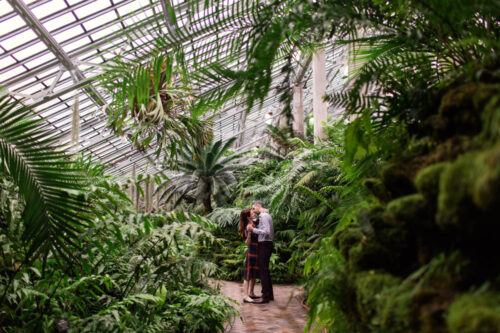 romantic Chicago engagement session in fern room at Garfield Park Conservatory
