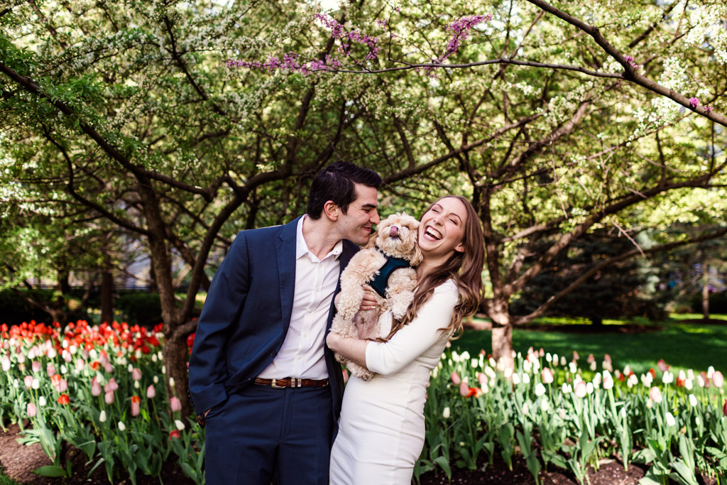 Local couple gets puppy kisses in spring garden during their downtown Chicago engagement session